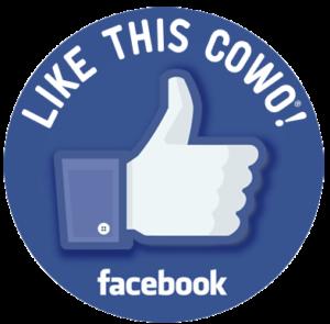 Cowo Grosseto su Facebook